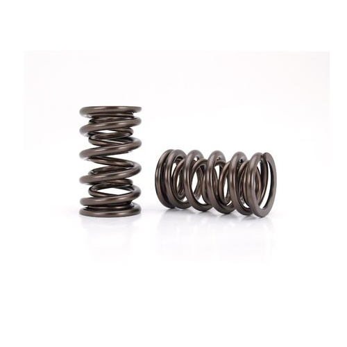 Valve Spring, Endurance, 1.560 in. OD, Dual, 2.050 in. Installed Height, Set of 16