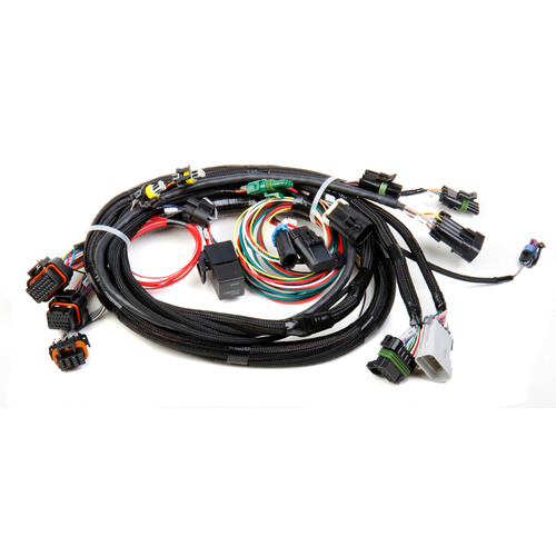 Fuel Injection Wire Harness, Multi-Port, Avenger, HP, Dominator, Speed Density, Each
